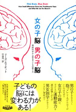 女の子脳 男の子脳